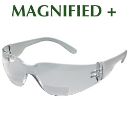 magnified.jpg